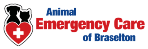 Emergency Animal Care Braselton